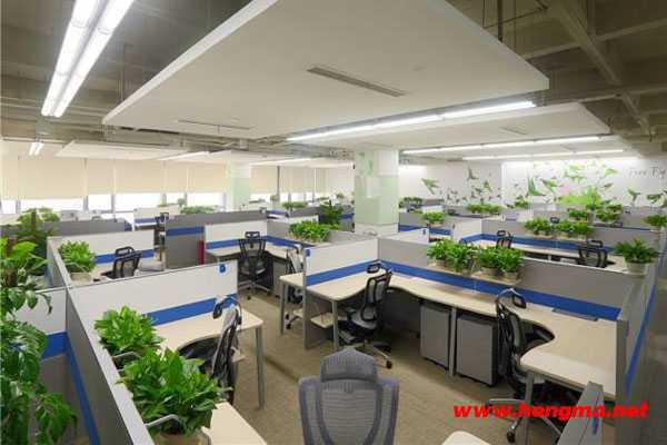 深圳市南山区企业网络布线、视频监控、电话及室内公共广播项目案例